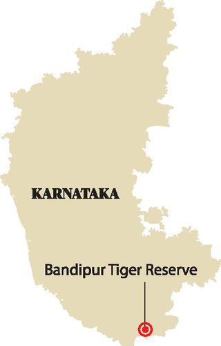 When Bandipur burned