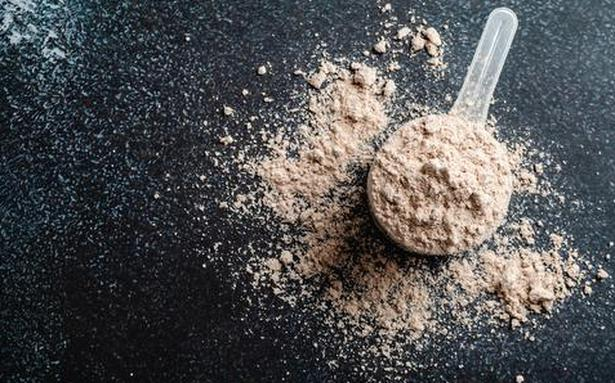 Everything you ever wanted to know about whey protein