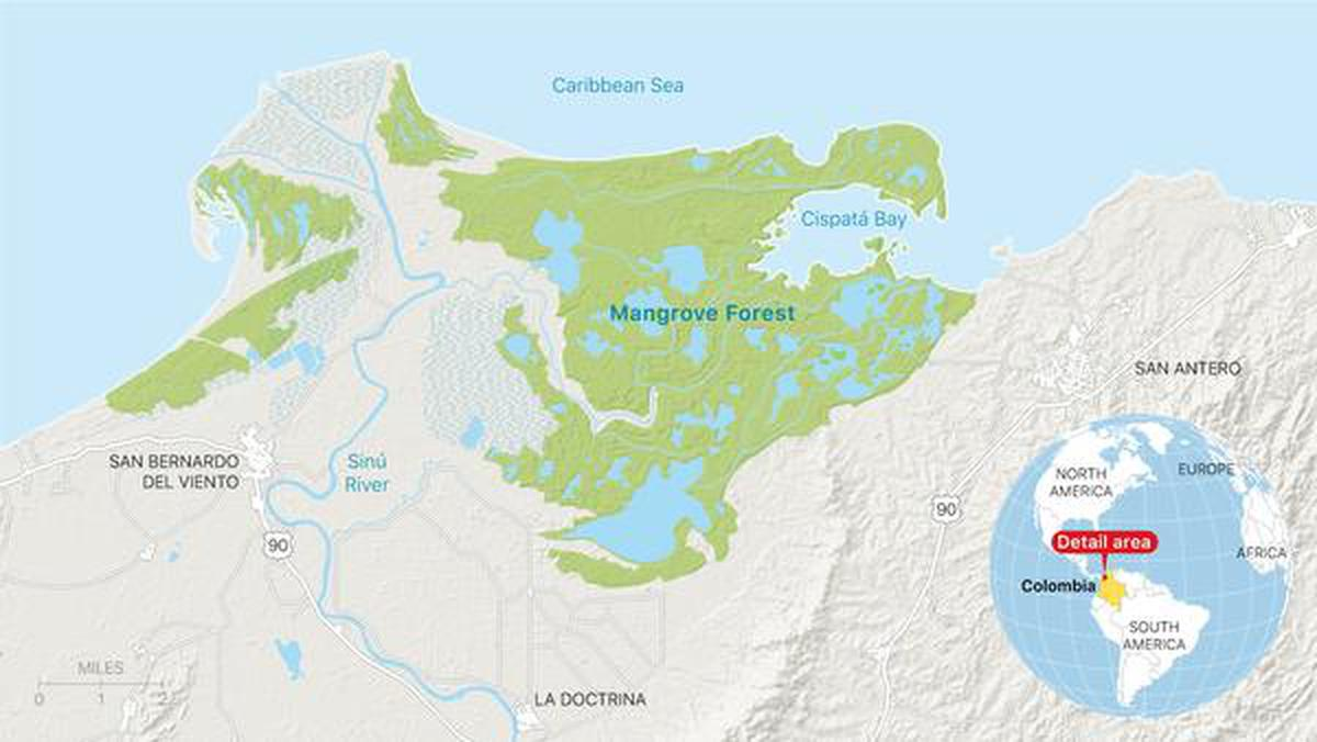 The Cispatá marine protected area in Córdoba, Colombia includes a 27,000 acre mangrove forest divided into zones that indicate when mangrove workers can use a particular area.