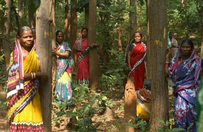 Never let them go: Women from Balarampur village hug trees in Jhinkargadi forest