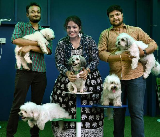 Heard Of Dog Cafes Chennais Twisty Tales Has Special Treats For