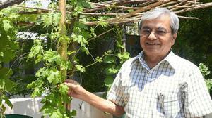 The sustainable lifestyle of Chennai's Solar Suresh