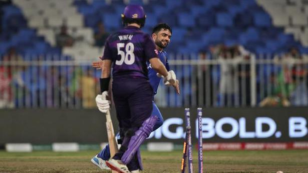 T20 World Cup | Mujeeb, Rashid spin out Scotland