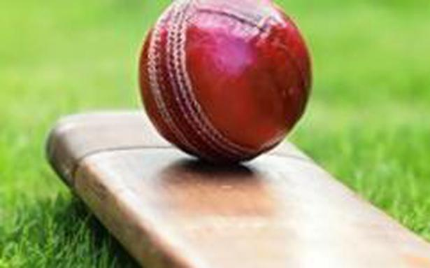 MCC rejects Bamboo bats, says it will be illegal