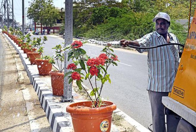 Taking a chance:A corporation worker waters the flower pots kept on the median on Anna Nagar Link Road in Tiruchi.Photo: M. SrinathM_SRINATH