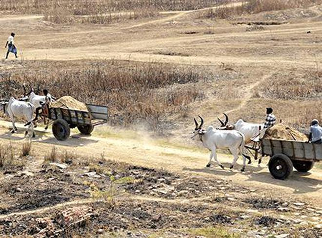 They have urged the government to open a quarry near Vengur and Mullaikudi in Tiruchi district.